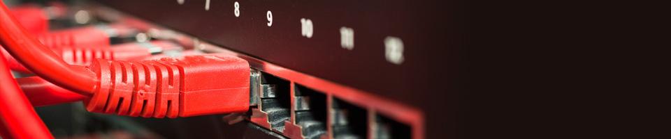 Vier rote LAN Kabel stecken in 4 Internet Anschlüssen